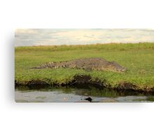 Dark Water Preditor Canvas Print