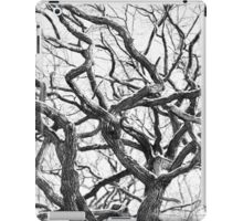 Tortuous tree iPad Case/Skin