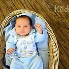 ~ Kaden ~ by Donna Keevers Driver