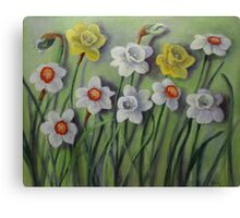 Daffodils Swaying Canvas Print