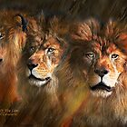 Way Of The Lion by Carol  Cavalaris
