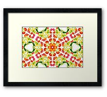 Kaleidoscope Salad Framed Print