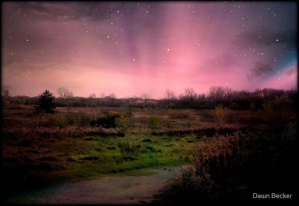 Evening Magic © by Dawn M. Becker