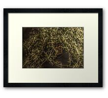 Thyme Piece Framed Print