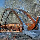 The bridge at Lion's Park by Susan Littlefield