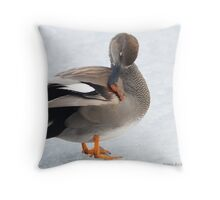 Gadwall  Throw Pillow