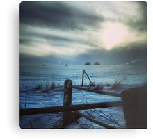 Secretive Snow Metal Print