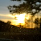 Unfocused Sunset by K. Abraham