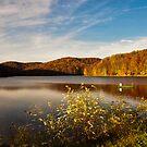Summit Lake by Jeanne Sheridan