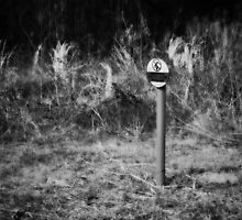 No Fracking Here by Scott Mitchell