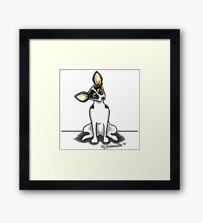 Rat Terrier Sit Pretty Framed Print
