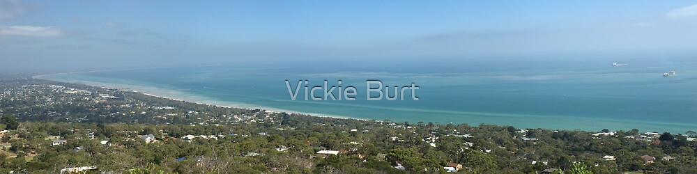 A view of Port Phillip Bay by Vickie Burt