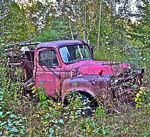 Rust and remember 5 by Carolyn Clark