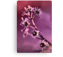 I'm Still Pretty Without My Petals! Canvas Print