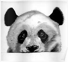 Panda sketch Poster