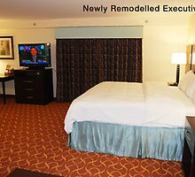 hotels in texas     by adimark780