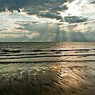 sunrays and mudflats by CatharineAmato