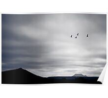 Geese Fly South for Winter Poster