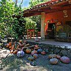 The Hacienda by Eileen McVey
