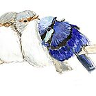Group of snuggling Blue Fairy Wrens by thedrawingroom