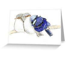 Group of snuggling Blue Fairy Wrens Greeting Card
