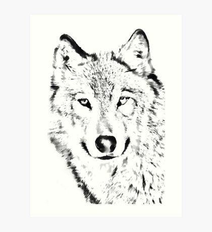 Grey Wolf (Canis lupus) Art Print
