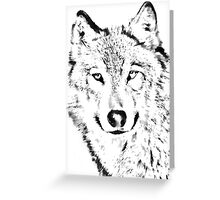 Grey Wolf (Canis lupus) Greeting Card