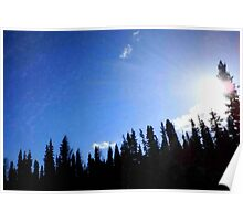 Sun Rays Over The Trees Poster