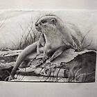 Otter by EmilyLouiseLong