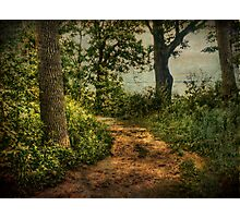 Path by the Lake Photographic Print