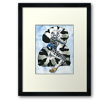 Snow Leopard Boy Framed Print