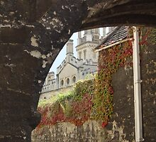 Looking Through an Arch by facingthewindow