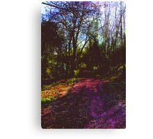 Psychedelic Dreams 3 Canvas Print