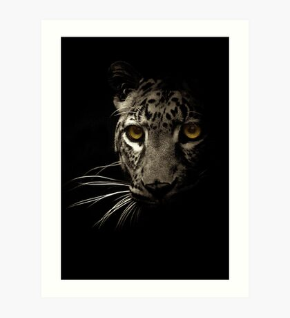 Large Cat's Eyes Art Print