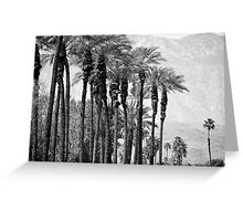 Desert Life Greeting Card