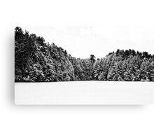 Winter Trees Mink Brook Hanover NH Canvas Print
