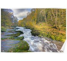 The Strid Poster