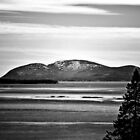 Frenchman Bay by lumiwa