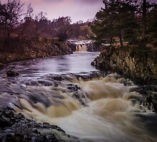 Low Force by Angie Morton