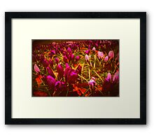 Colourful Touch... Framed Print