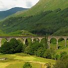 Glenfinnan Viaduct by Donald  Stewart