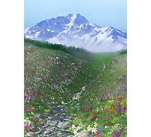 Alpine Meadow Photographic Print