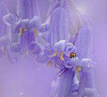 Spring Bells by EbyArts