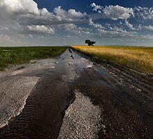 Prairie Road Storm Clouds Saskatchewan Canada field by pictureguy