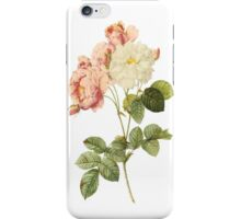 Peony Floral Ipod or Iphone Case iPhone Case/Skin