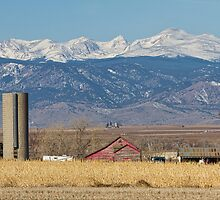 Rocky Mountain Country View by Bo Insogna