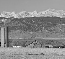 Rocky Mountain Country View Black And White by Bo Insogna