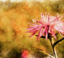 Pink Flower by leapdaybride