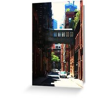 In the Alley Greeting Card