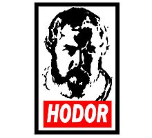 Obey Hordor Photographic Print